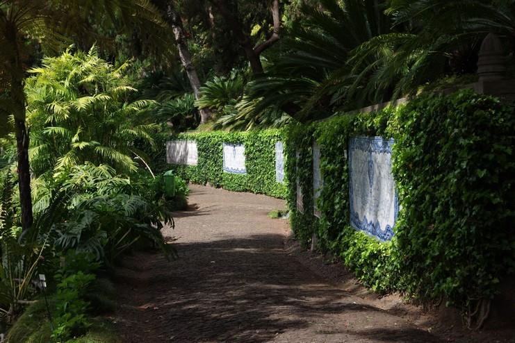 botanicka_zahrada_funchal