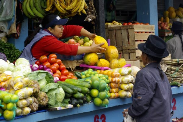 ekvadorsketrhy_web17