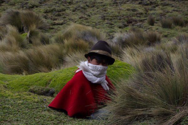 hory_ekvadoru14