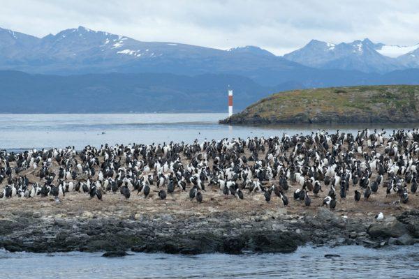 patagonie_hory_022